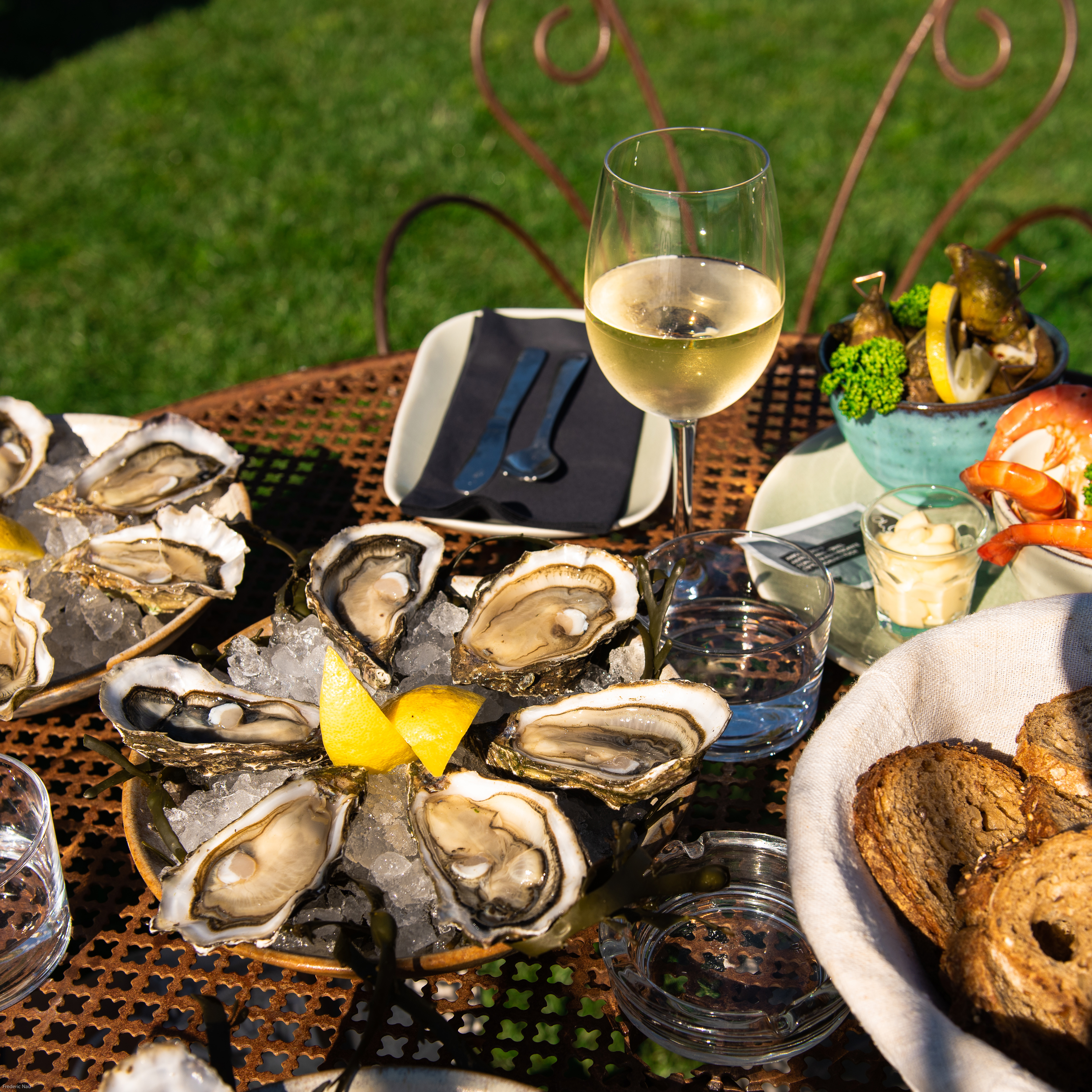 Oysters and Nature