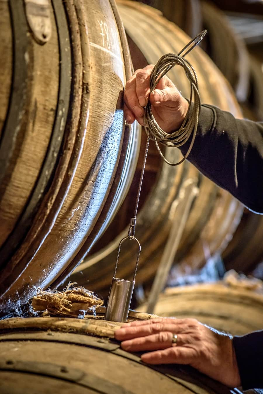 Cognac being checked when maturing in the oak barrel